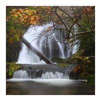 Vodopád krkonošského pralesa
